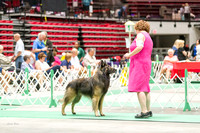 Dogshow 2017-07-08 Greater DeKalb KC--101626