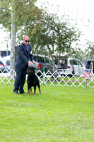 Dogshow 2017-08-01 Burlington WI KC D2--145819