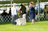 Dogshow 2017-06-04 untitled shoot--102102