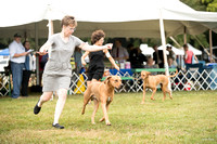 Dogshow 2016-08-13 Oak Creek--101937-2