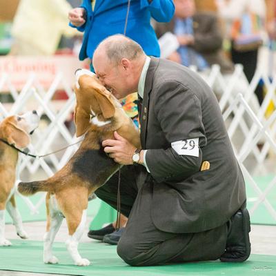 Dogshow 2016-06-16 Grayslake--093025