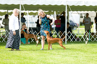 Dogshow 2017-06-04 untitled shoot--093603