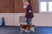 Dogshow 2018-04-07 Interlocking SSC--093505-3