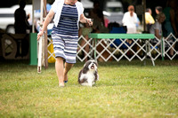 Dogshow 2016-08-13 Oak Creek--090632