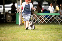 Dogshow 2016-08-13 Oak Creek--090631-2