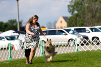 Dogshow 2017-08-01 Burlington WI KC D2--092523
