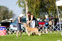 Dogshow 2017-08-01 Burlington WI KC D2--092544