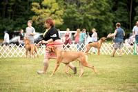 Dogshow 2016-08-13 Oak Creek--101536