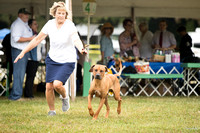 Dogshow 2016-08-13 Oak Creek--101934