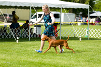 Dogshow 2017-06-04 untitled shoot--093556-2