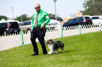 Dogshow 2017-08-01 Burlington WI KC D2--101901-2