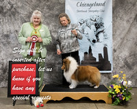 Dogshow 2018-03-04 CSSC Day 2--141705-4