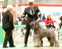 Dogshow 2017-12-09 Skokie Valley KC--165407