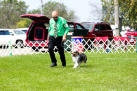 Dogshow 2017-08-01 Burlington WI KC D2--101858