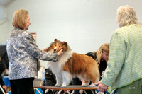 Dogshow 2018-03-04 CSSC Day 2 Candids--134910