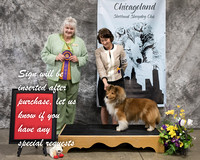 Dogshow 2018-03-04 CSSC Day 2--142155