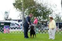 Dogshow 2017-08-01 Burlington WI KC D2--145825