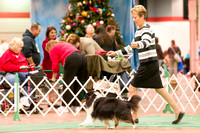 Dogshow 2017-12-09 Skokie Valley KC--153312