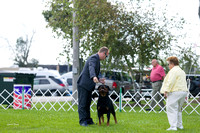 Dogshow 2017-08-01 Burlington WI KC D2--145823