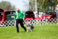 Dogshow 2017-08-01 Burlington WI KC D2--101858-4