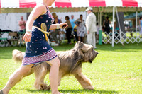 Dogshow 2017-08-01 Burlington WI KC D2--153906-3