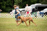 Dogshow 2016-08-13 Oak Creek--101456