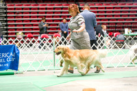 Dogshow 2017-04-08 KC of Yorkville--153805