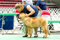 Dogshow 2017-07-08 Greater DeKalb KC--133801